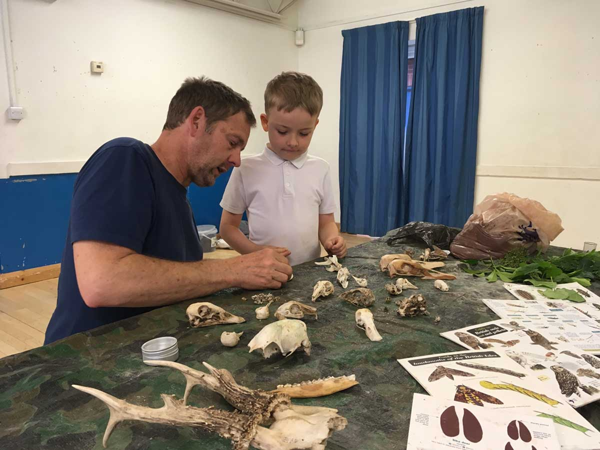 boy looking at animal artefacts on a table